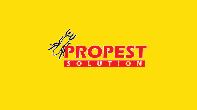 ProPest Solution Desktop View
